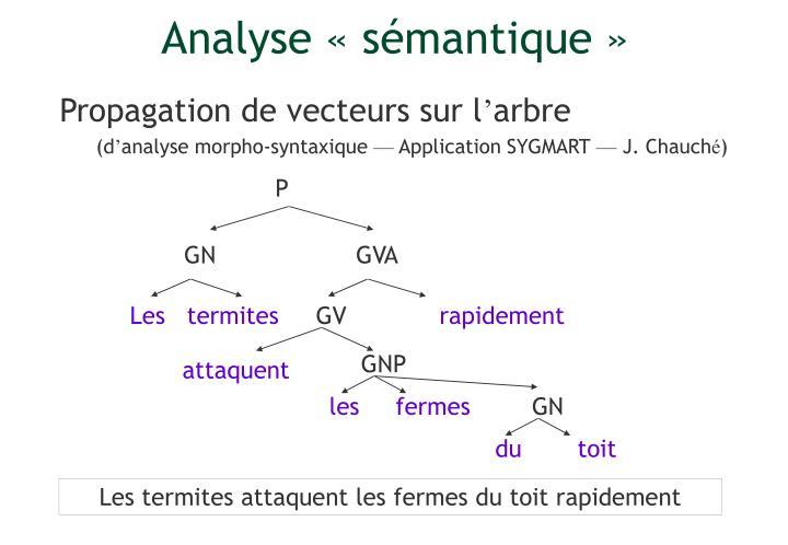 Analyse «sémantique»