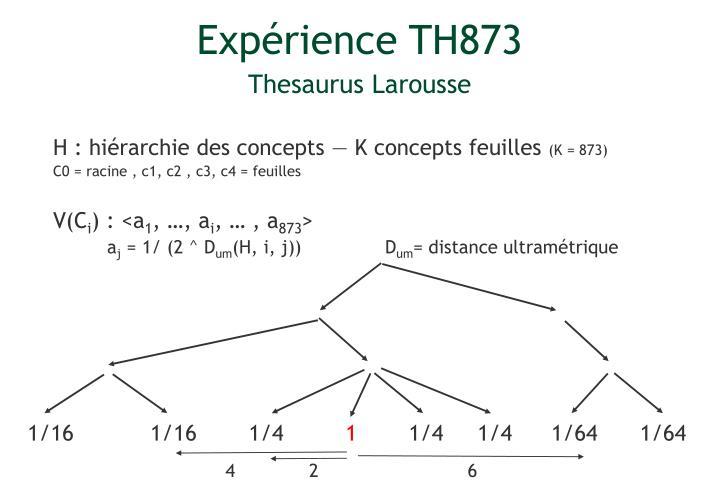 Expérience TH873