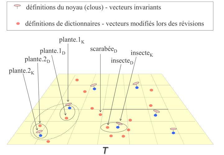 définitions du noyau (clous) - vecteurs invariants