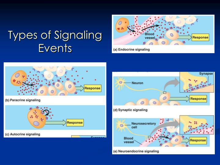 Types of Signaling Events