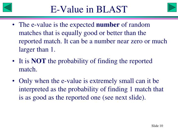 E-Value in BLAST
