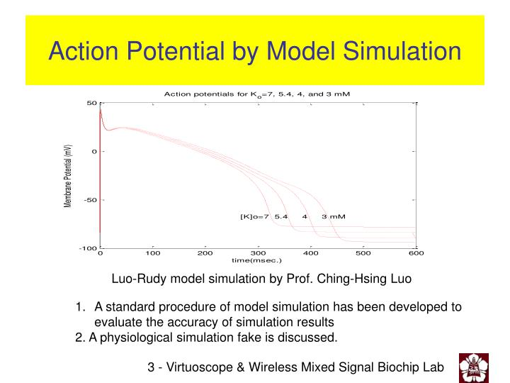 Action potential by model simulation