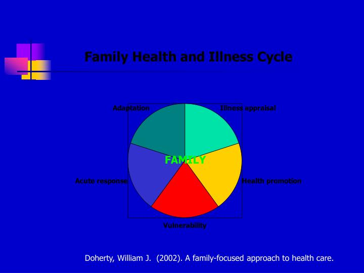 Doherty, William J.  (2002). A family-focused approach to health care.