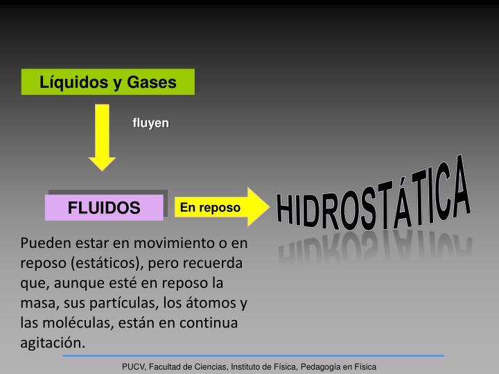Líquidos y Gases