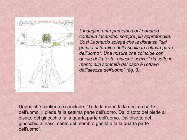 """L'indagine antropometrica di Leonardo continua facendosi sempre più approfondita. Così Leonardo spiega che la distanza """"dal gomito al termine della spalla fa l'ottava parte dell'uomo"""". Una misura che coincide con quella della testa, giacché scrive:"""" da sotto il mento alla sommità del capo è l'ottavo dell'altezza dell'uomo"""" (fig. 3)."""