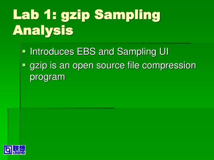 Lab 1: gzip Sampling Analysis
