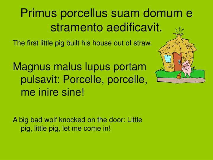Primus porcellus suam domum e stramento aedificavit.