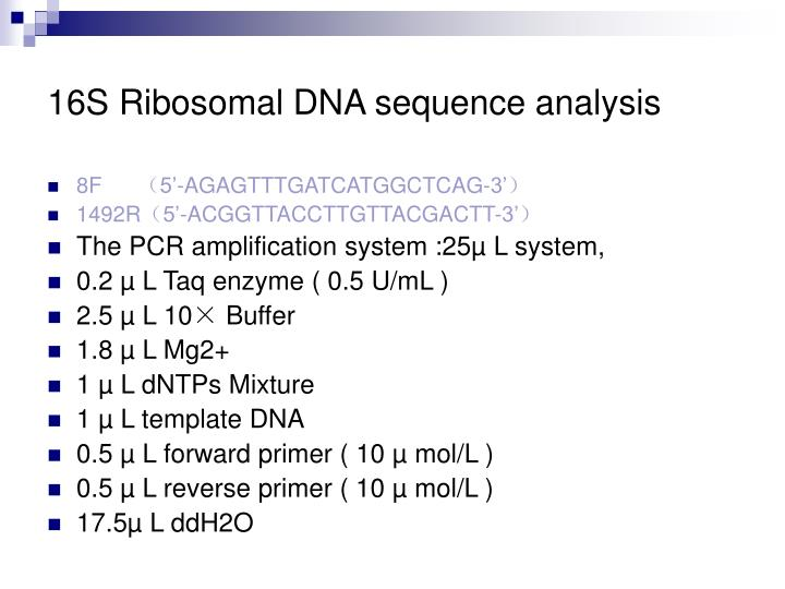 16S Ribosomal DNA sequence analysis