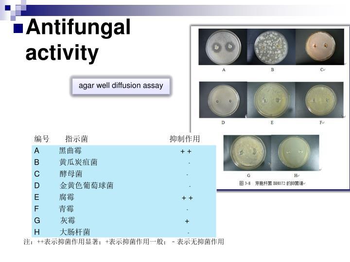 agar well diffusion assay