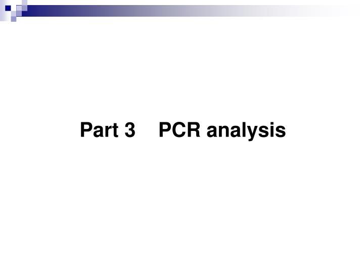 Part 3    PCR analysis