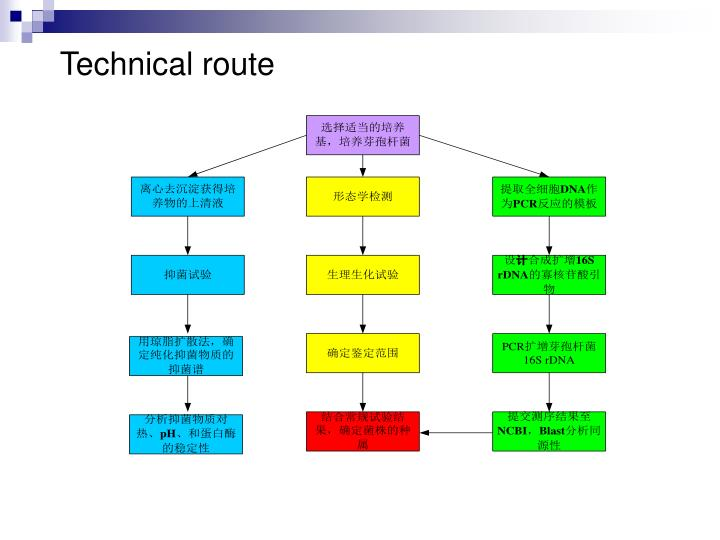 Technical route