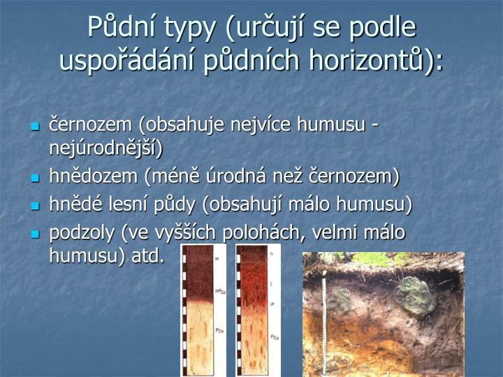 Půdní typy (určují se podle uspořádání půdních horizontů):