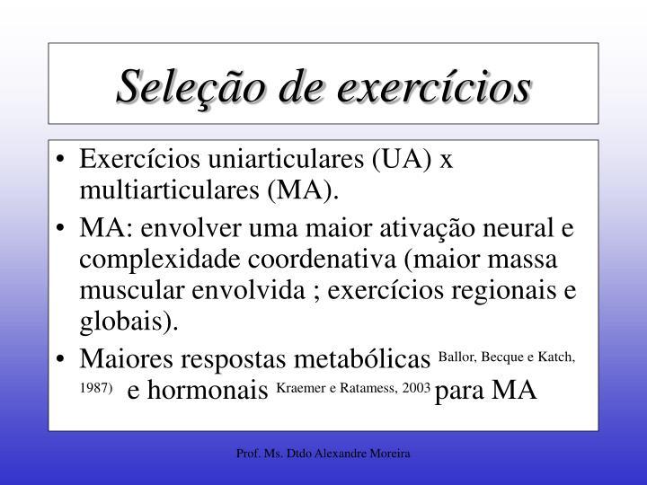 Seleção de exercícios