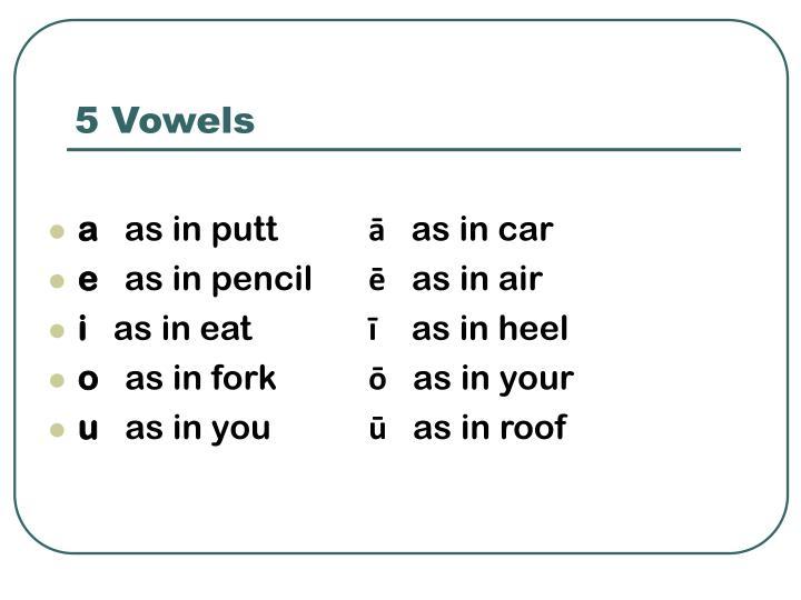 5 Vowels