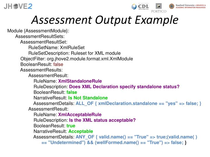 Assessment Output Example