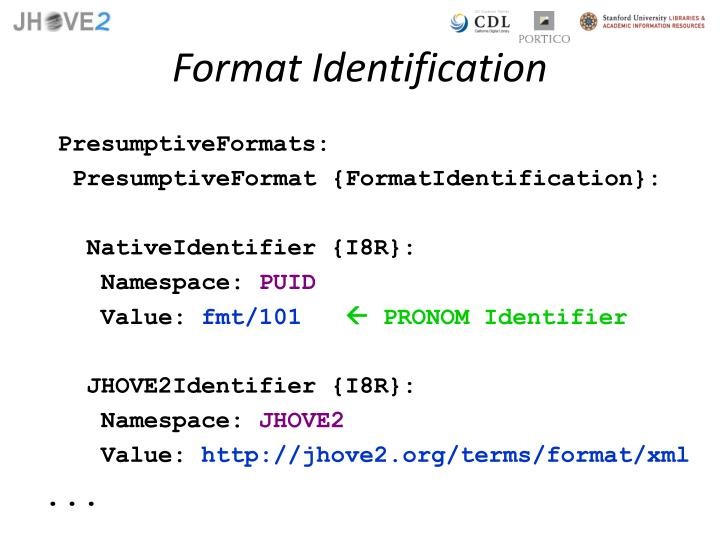 Format Identification