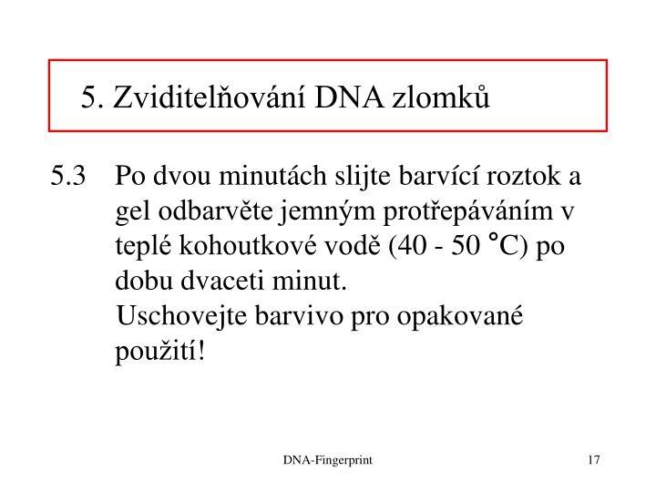 5. Zviditelňování DNA zlomků