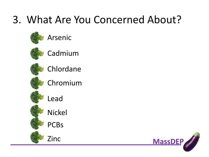 3.  What Are You Concerned About?