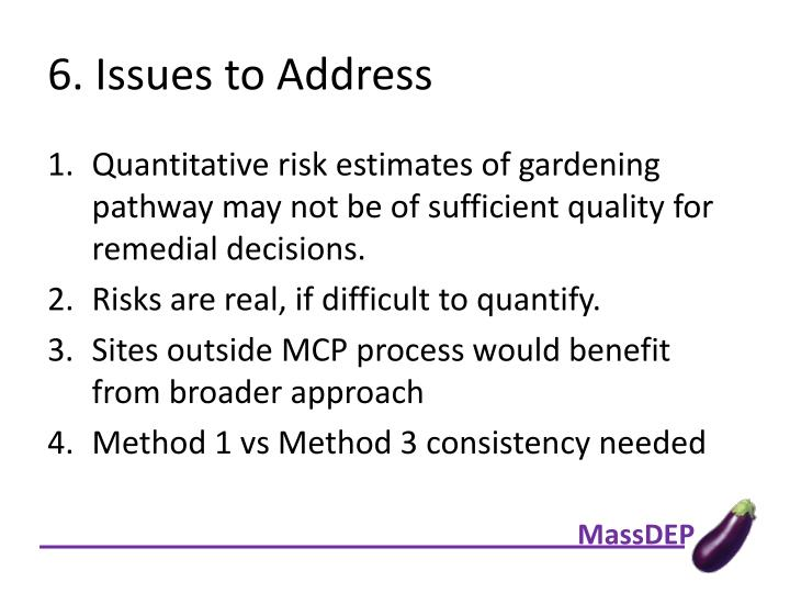 6. Issues to Address