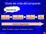 ciclo de vida del proyecto