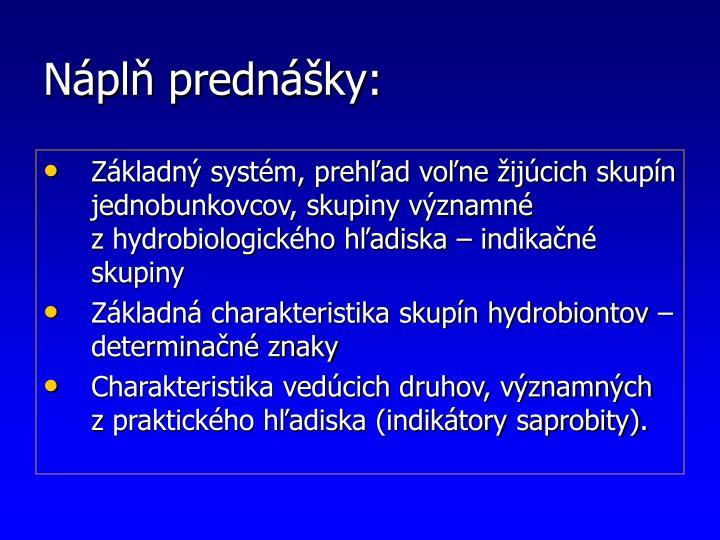 Náplň prednášky: