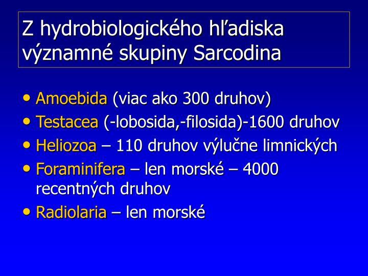 Z hydrobiologického hľadiska významné skupiny Sarcodina