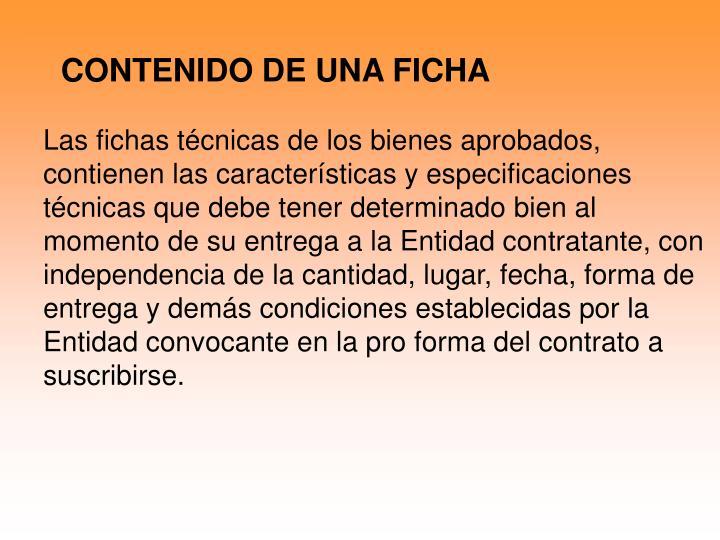 CONTENIDO DE UNA FICHA