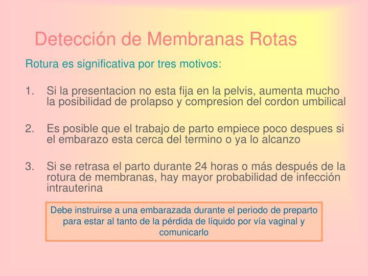 Detección de Membranas Rotas