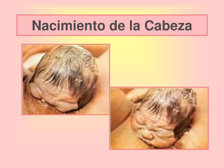 Nacimiento de la Cabeza