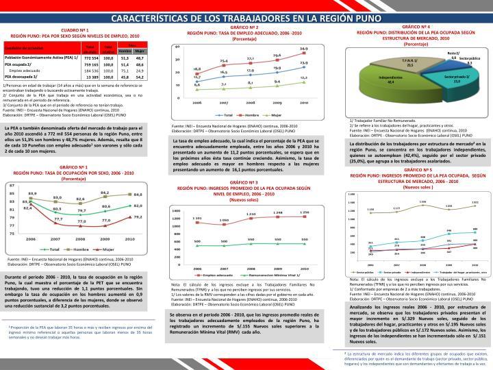 CARACTERÍSTICAS DE LOS TRABAJADORES EN LA REGIÓN PUNO