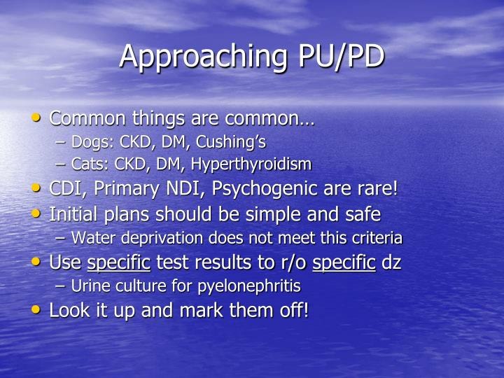 Approaching PU/PD