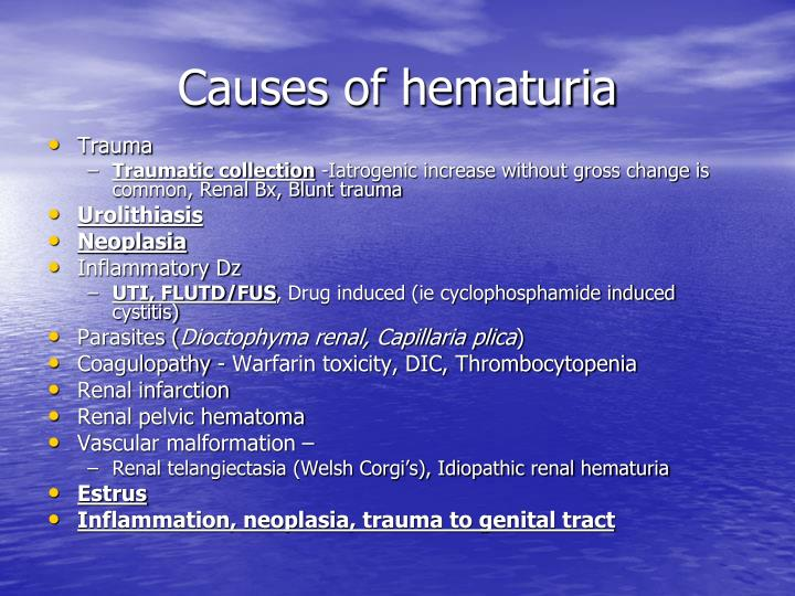 Causes of hematuria