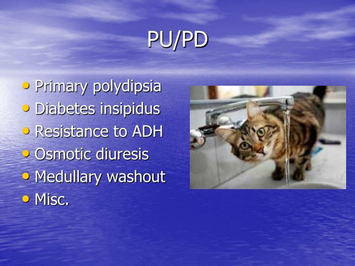 PU/PD