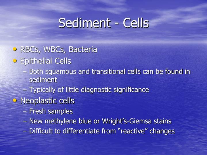 Sediment - Cells