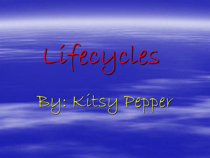 Lifecycles