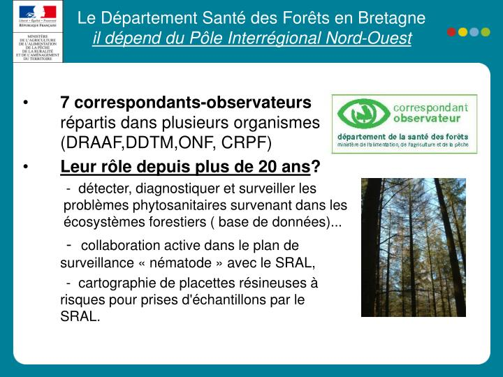 Le Département Santé des Forêts en Bretagne