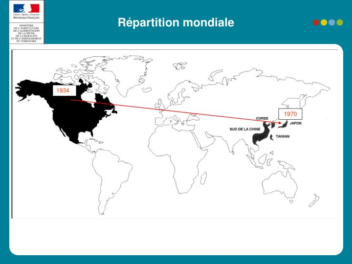 Répartition mondiale