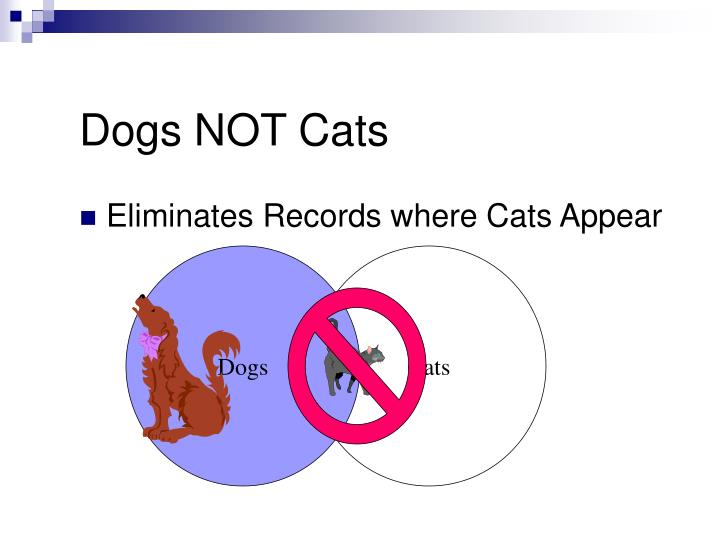 Dogs NOT Cats