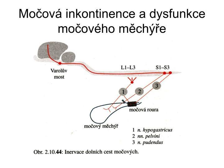 Močová inkontinence a dysfunkce močového měchýře