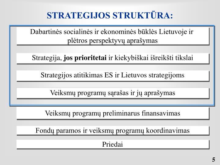 STRATEGIJOS STRUKTŪRA: