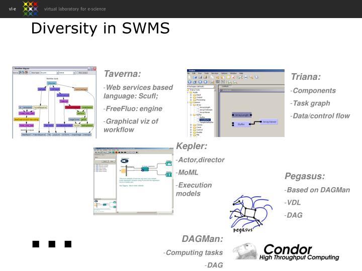 Diversity in SWMS
