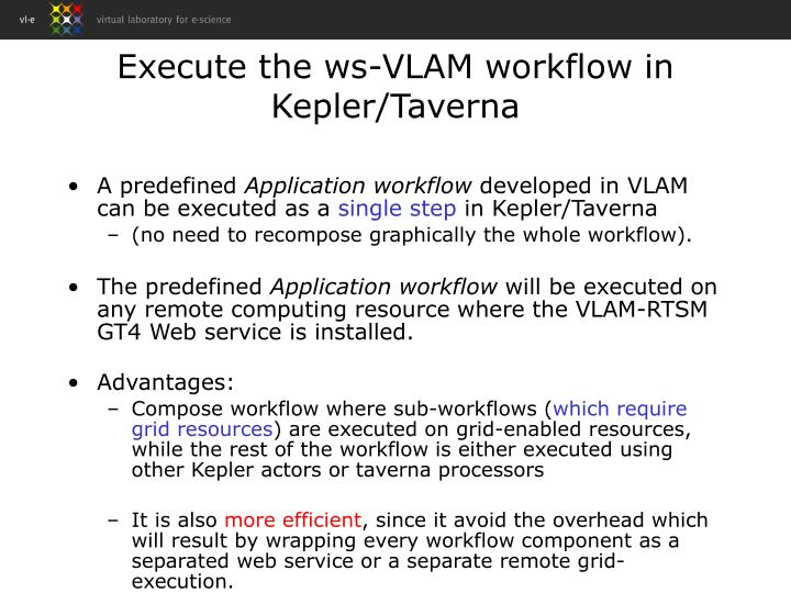 Execute the ws-VLAM workflow