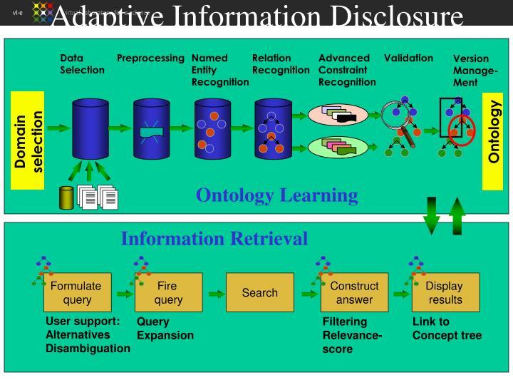Adaptive Information Disclosure