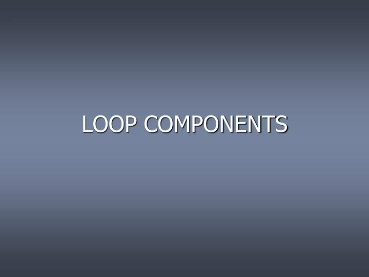 LOOP COMPONENTS