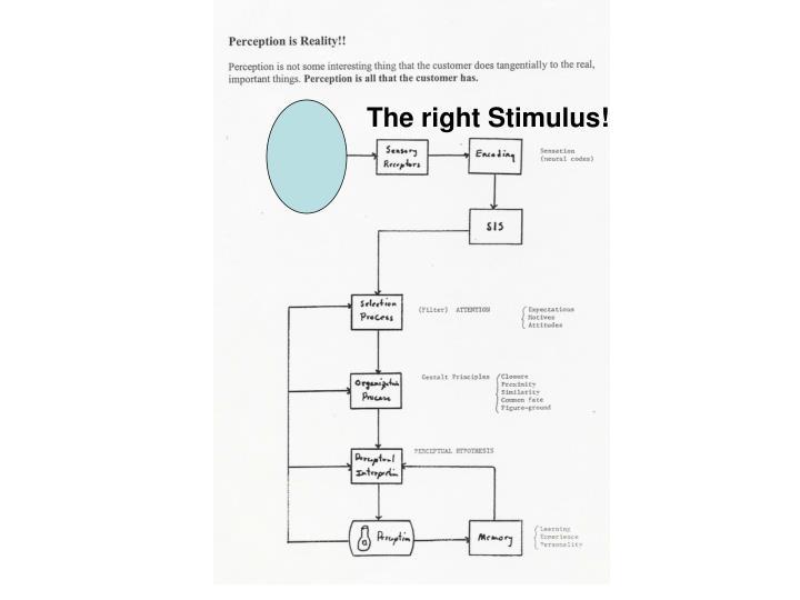 The right Stimulus!
