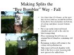 making splits the bee bumbler way fall