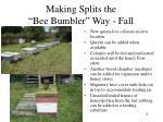 making splits the bee bumbler way fall1