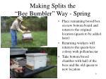 making splits the bee bumbler way spring1