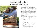 making splits the bee bumbler way11