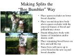 making splits the bee bumbler way6